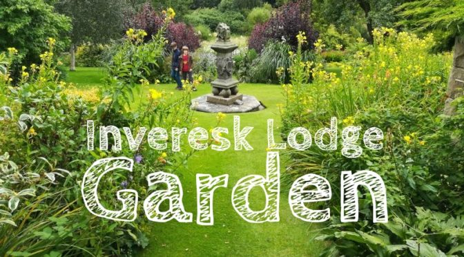 Inveresk Lodge Garden, National Trust for Scotland,