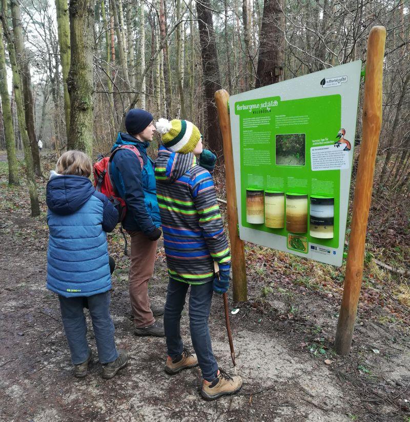 Naturlehrpfad Kühlungsborn Stadtwald