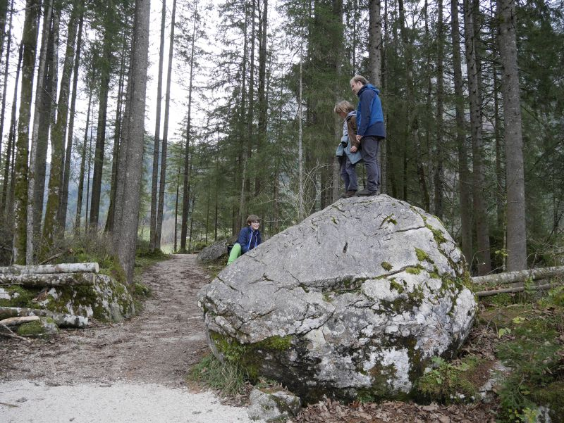 Zauberwald, Hintersee, Berchtesgaden