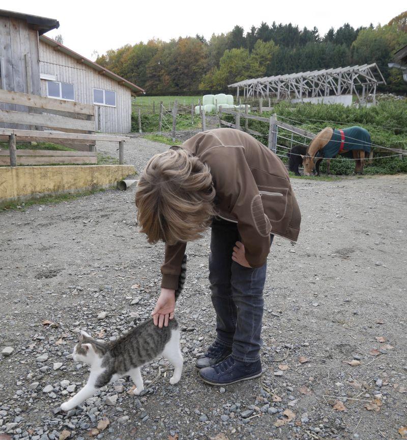 Familotel Bayerischer Wald Landhaus zur Ohe Katzen