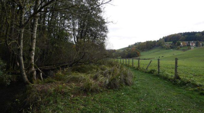 Familotel Bayerischer Wald Landhaus zur Ohe Natur