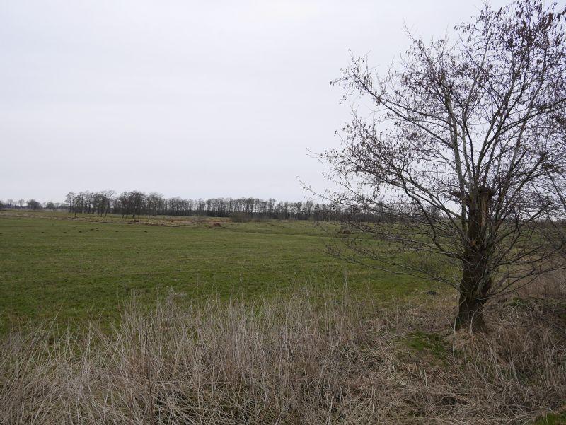Geocaching in Dithmarschen