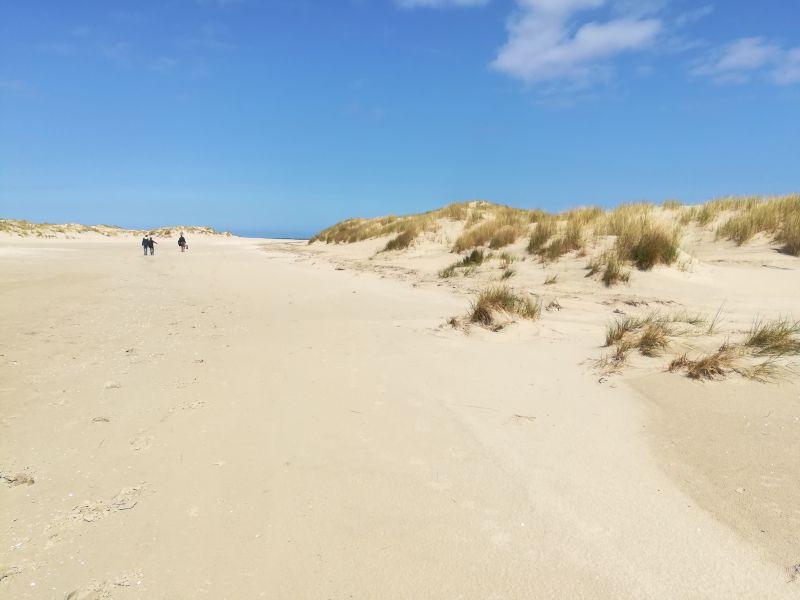 Borkum mit Kindern Dünen Ostland Strand