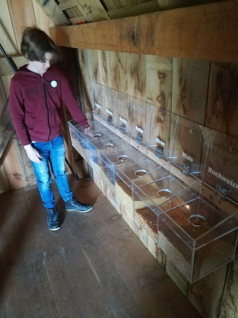 Bielefelder Bauernhausmuseum mit Kind, Bockwindmühle