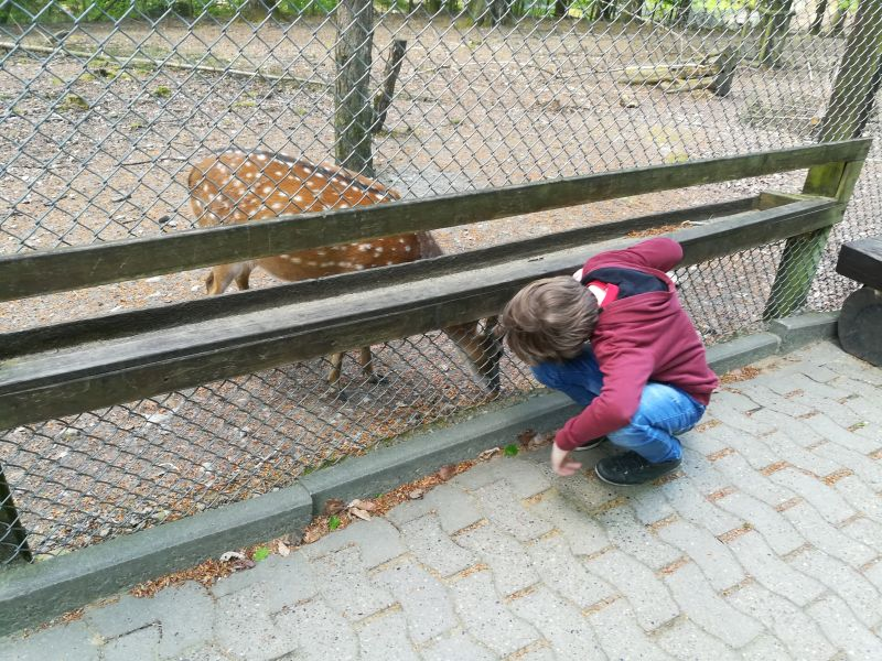 Bielefeld mit Kind, Tierpark Olderdissen