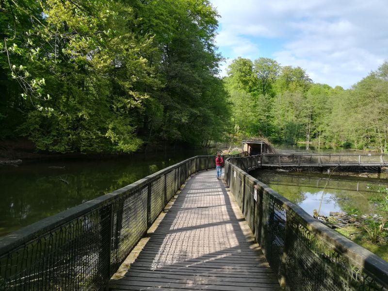 Bielefeld mit Kind, Tipps und Erfahrungen, Heimat-Tierpark Olderdissen