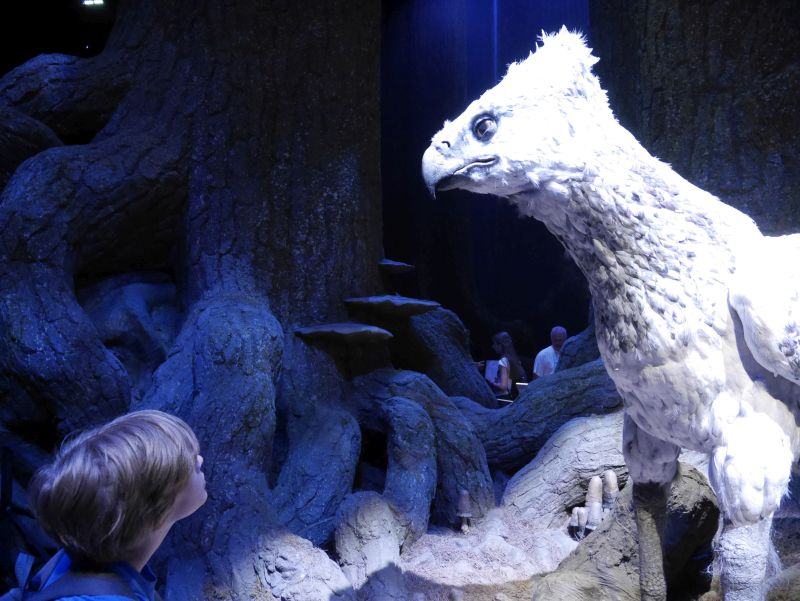Harry Potter London mit Kindern, Warner Bros Studio Tour, Seidenschnabel, Verbotener Wald