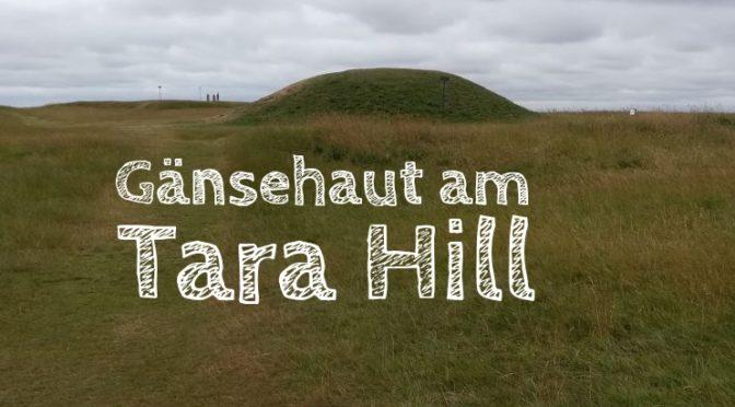 Gänsehaut am Tara Hill: Eine selbst erlebte Lagerfeuergeschichte