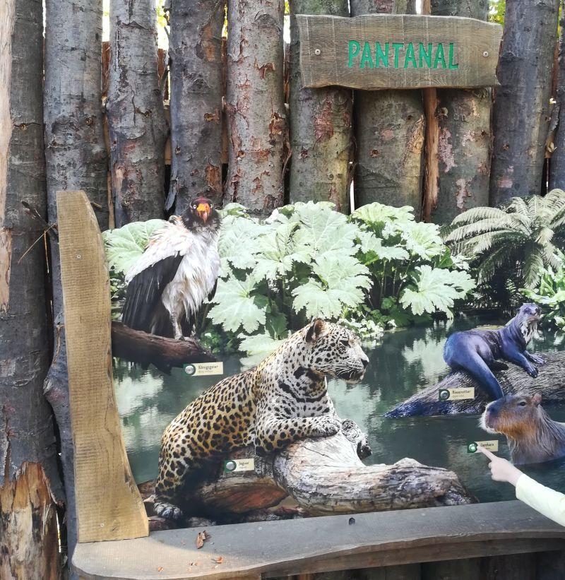 Leipzig Zoo mit Kindern