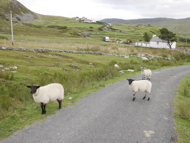donegal landstraße, Irland