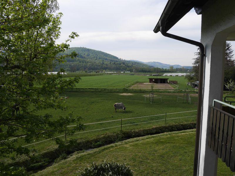gästehaus gehri waldkirch aussicht