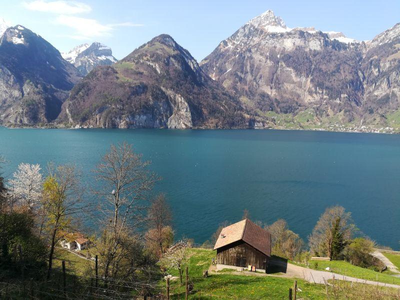 Schweiz Vierwaldstättersee Tellsplatte