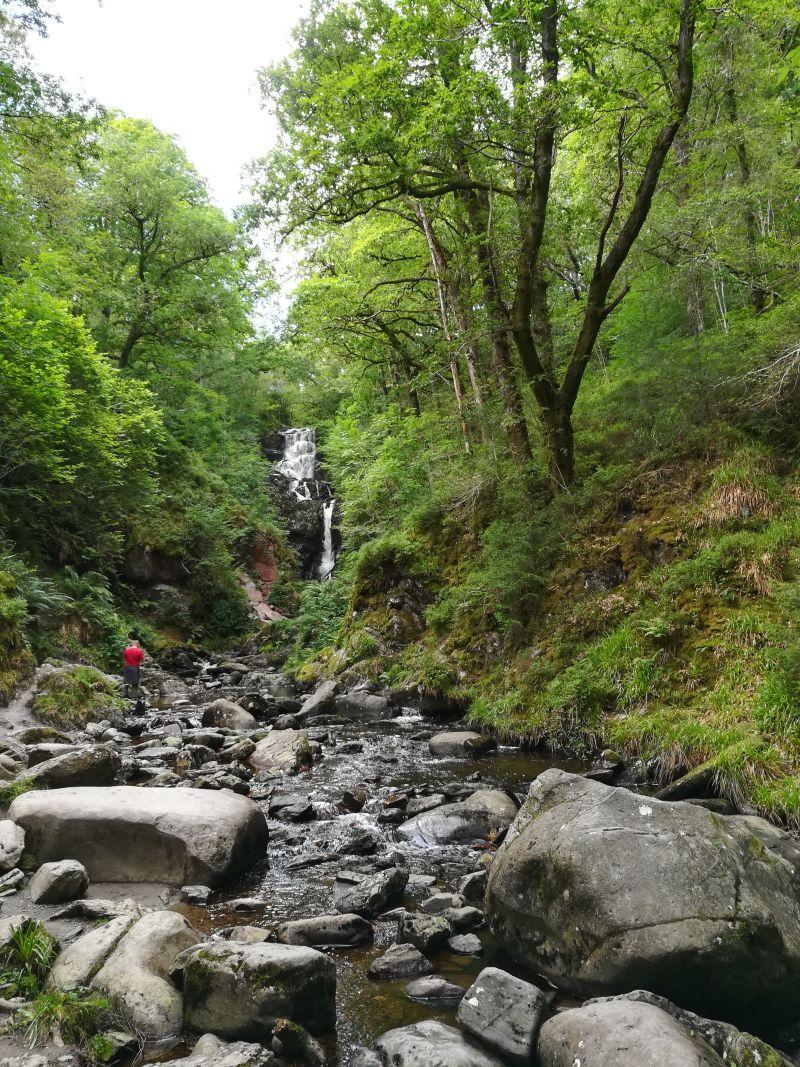 aberfoyle forest lodge wasserfall