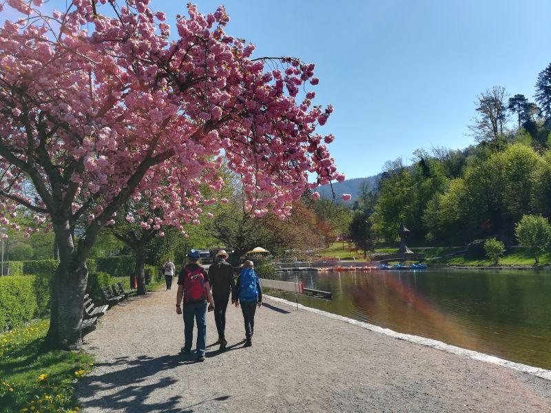 Stadtrain-Park, Waldkirch, Schwarzwald