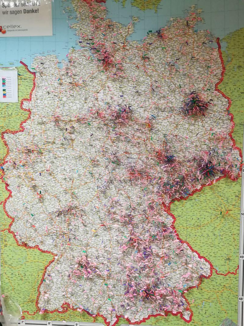 DKMS Karte