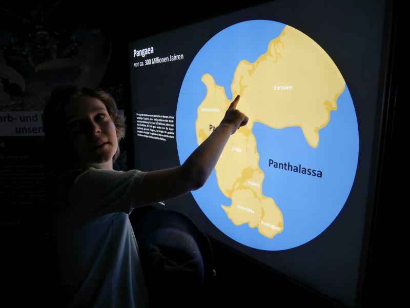 wilhelmshaven aquarium urzeitmeermuseum mit kind