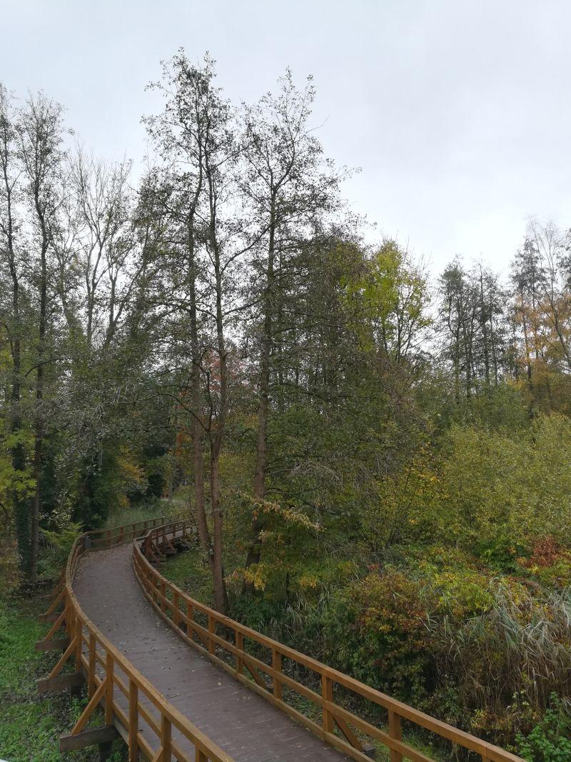 holzbohlenweg rundweg zwischenahner meer, Bad Zwischenahn