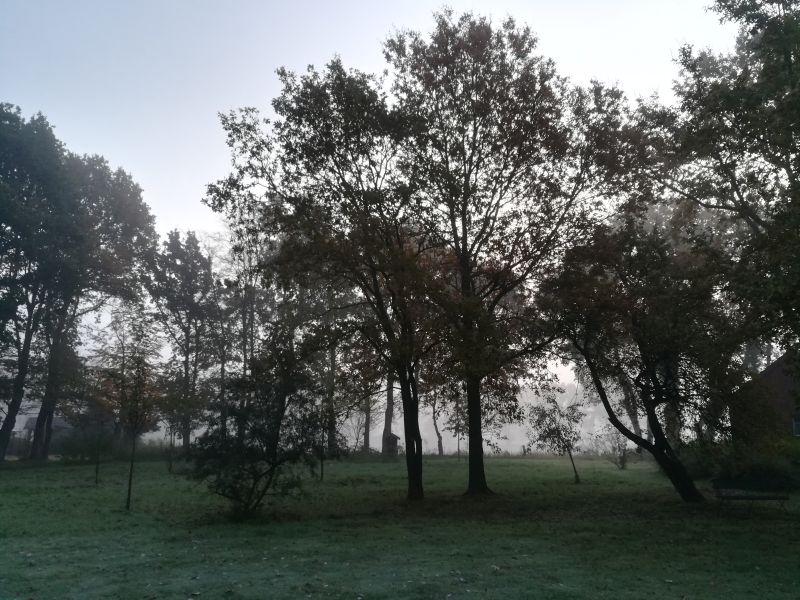 lieblingsbleibe ammerland garten november