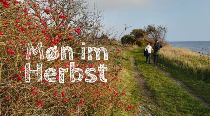Herbstferien: Eine Woche im Ferienhaus auf Møn