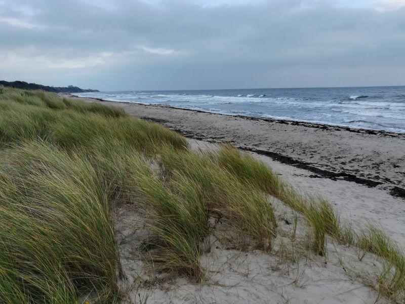 dänemark strand mön