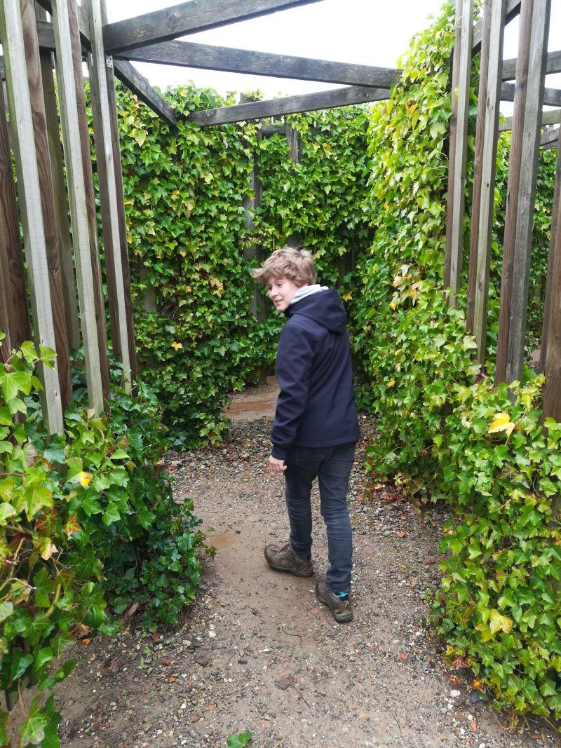 kalvehave labyrinth park dänemark efeulabyrinth