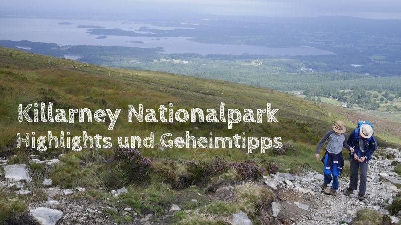 killarney nationalpark mit kindern