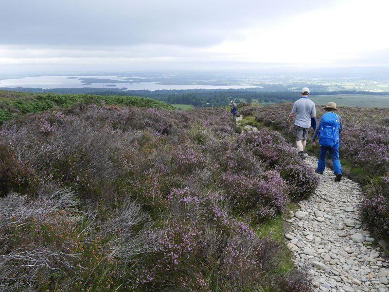 mangerton mountains, killarney nationalpark mit kindern, wandern, Irland