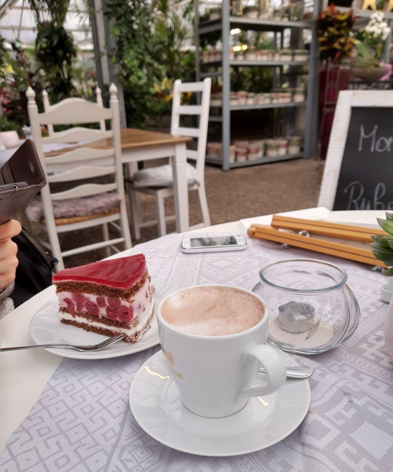 braunschweig cafe flora kuchen