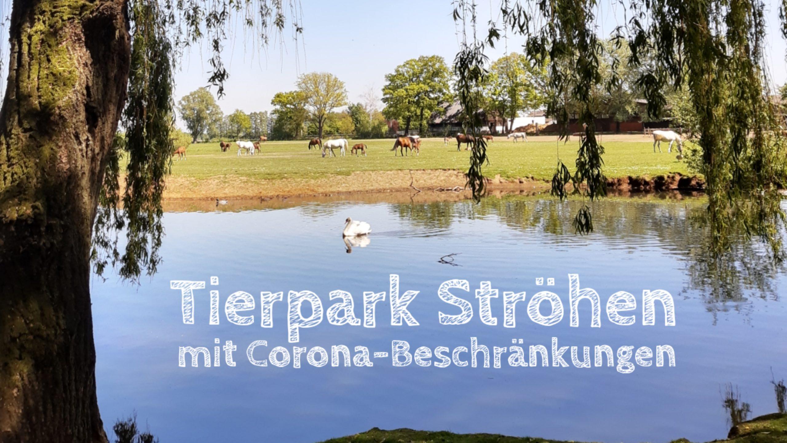tierpark ströhen corona