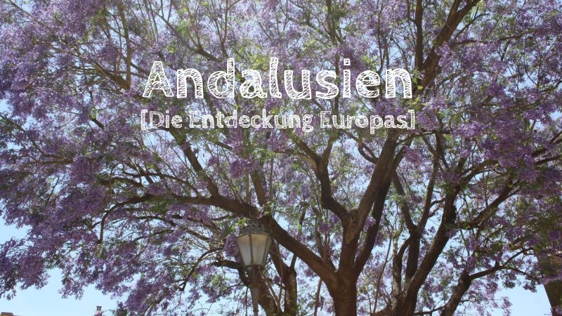 europa andalusien jacaranda bäume