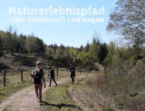 Alter Steinbruch Liekwegen: Familienspaziergang im Schaumburger Land