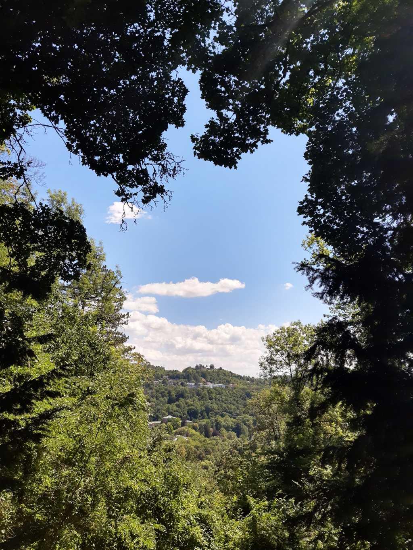 rhoen wald blauer himmel burgruine