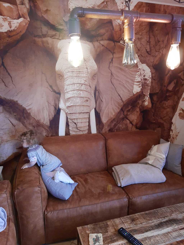 sauerland ferienwohnung elefant