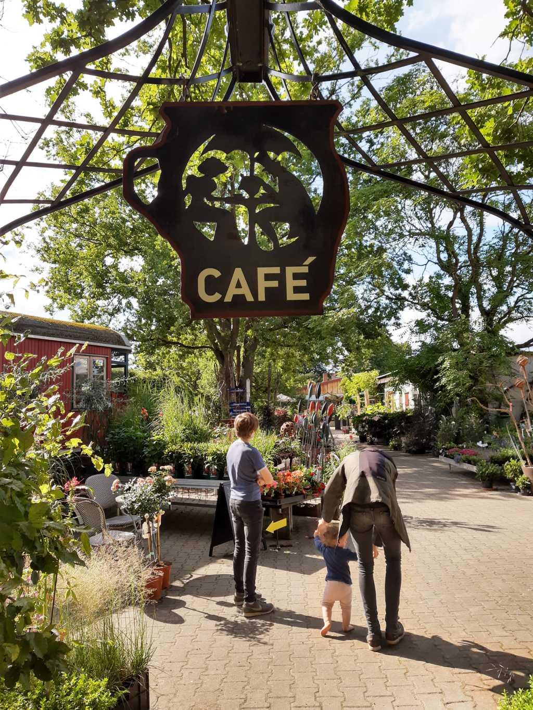 uelzen pur natur cafe