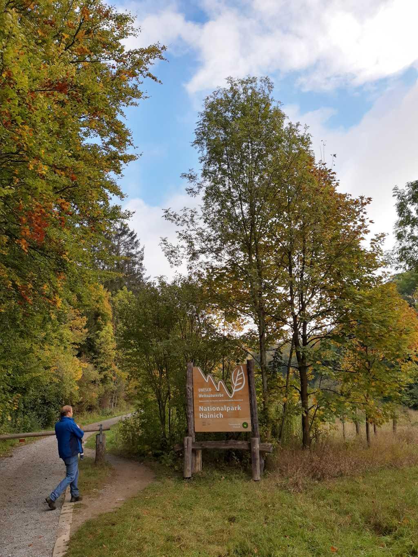 thüringen nationalpark hainich eingang