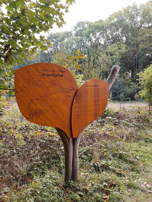 thüringen nationalpark hainich urwaldpfad schild