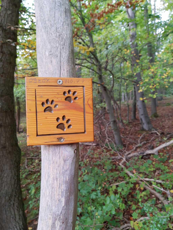 wildkatzenschleichpfad schild wandern mit kindern hainich