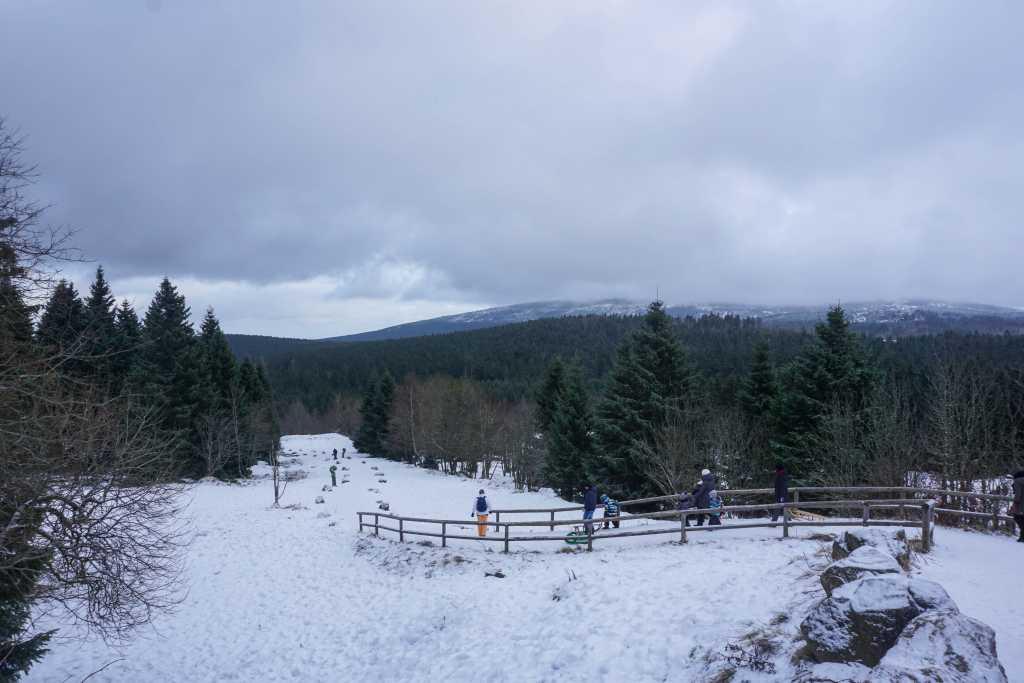 moor im schnee torfhausmoor
