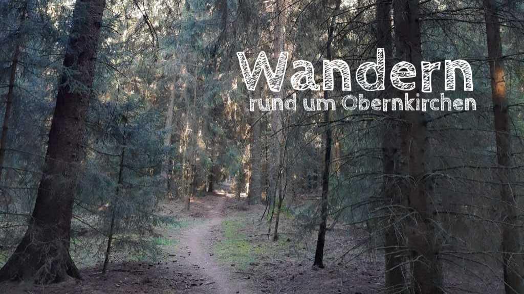 wandern in obernkirchen bückeberg