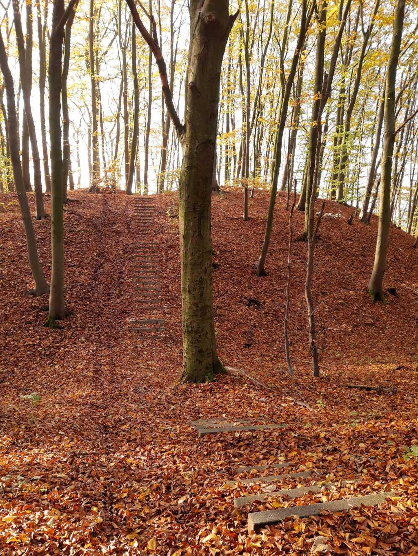 wandern in schaumburg frankenburg rinteln