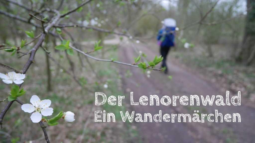 lenorenwald leonorenwald klützer winkel