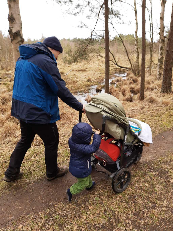 ribnitzer großes moor mit kinderwagen