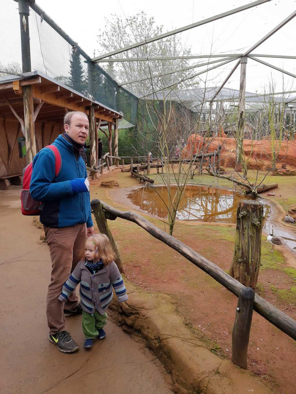 vogelpark marlow begehbare voliere
