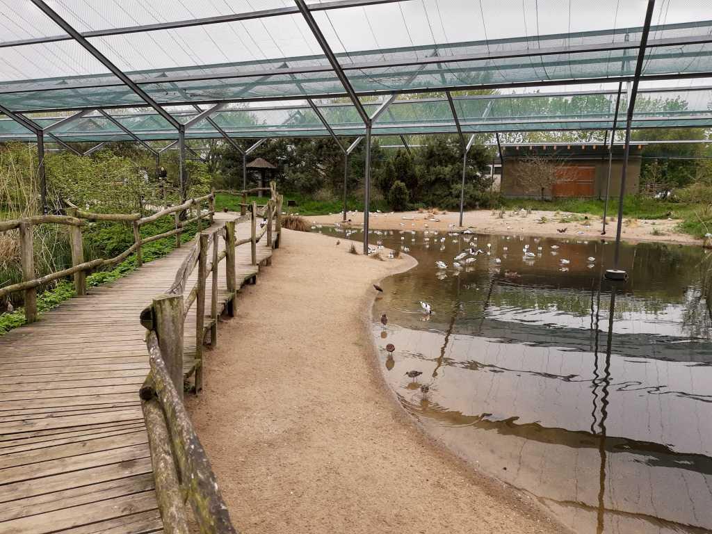 boddenlandschaft vogelpark marlow