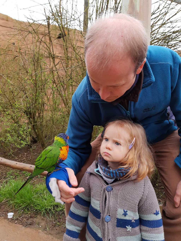 vogelpark marlow lori und kleinkind