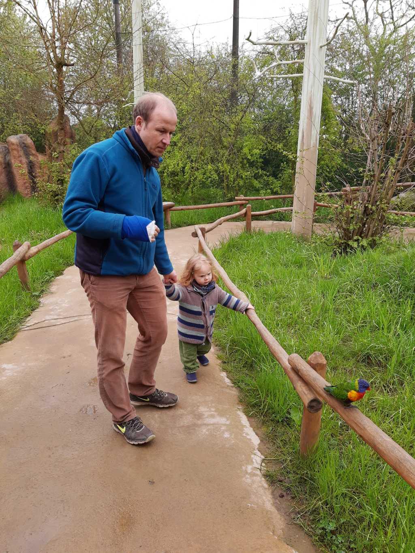 vogelpark marlow mit kleinkind lori