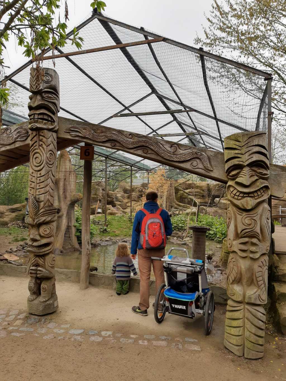 vogelpark marlow neuseeland keas