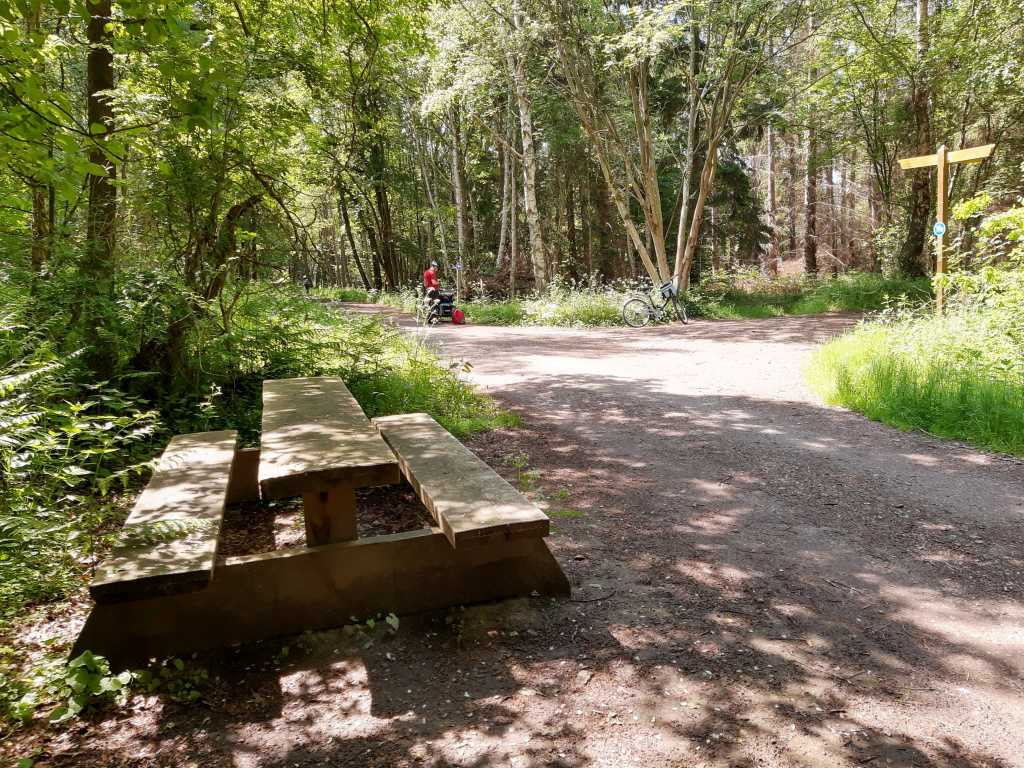darsswald fahrrad weg