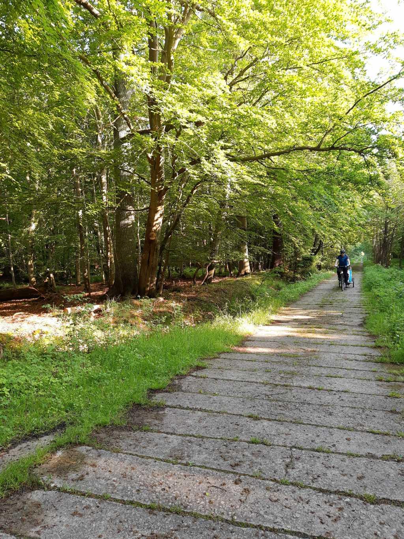 osterwald zingst fahrrad