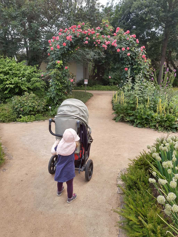botanischer garten braunschweig mit kind rosenbogen